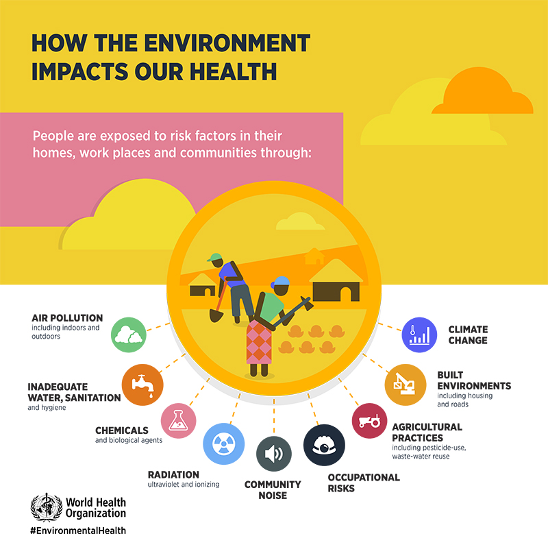 World Health Organization Inforgraphic on Environmental Health